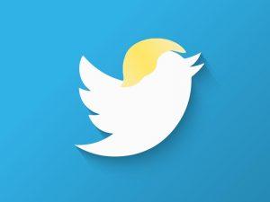 Twitter König Trump